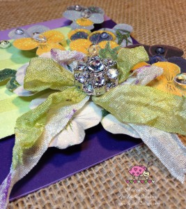 Scarlet Calliope Violets 6