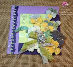 Scarlet Calliope Violets 7