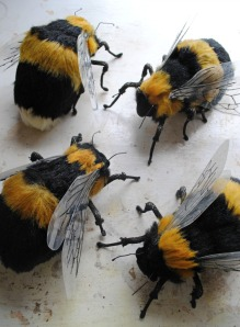 Mister Finch bees-small