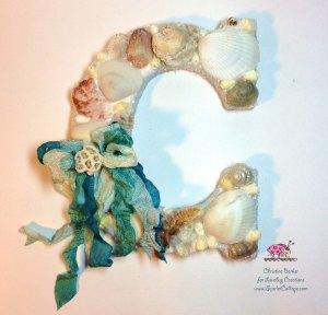 Scarlet Calliope Sea Shells C 10