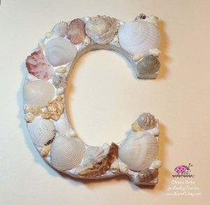 Scarlet Calliope Sea Shells C 6